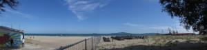 panorama1-big
